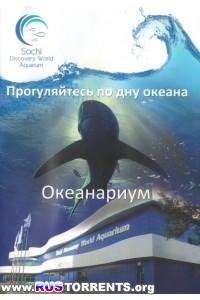 Сочинский океанариум | DVDRip