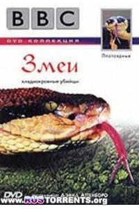 BBC: Плотоядные. Змеи | DVDRip-AVC