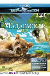Мадагаскар 3D | BDRip 1080p | 3D-Video | halfOU