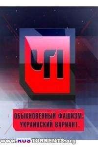ЧП. Спецвыпуск - Обыкновенный фашизм. Украинский вариант | SATRip