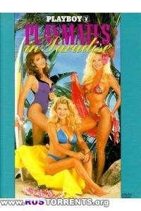 Playboy: Подружки в раю | DVDRip