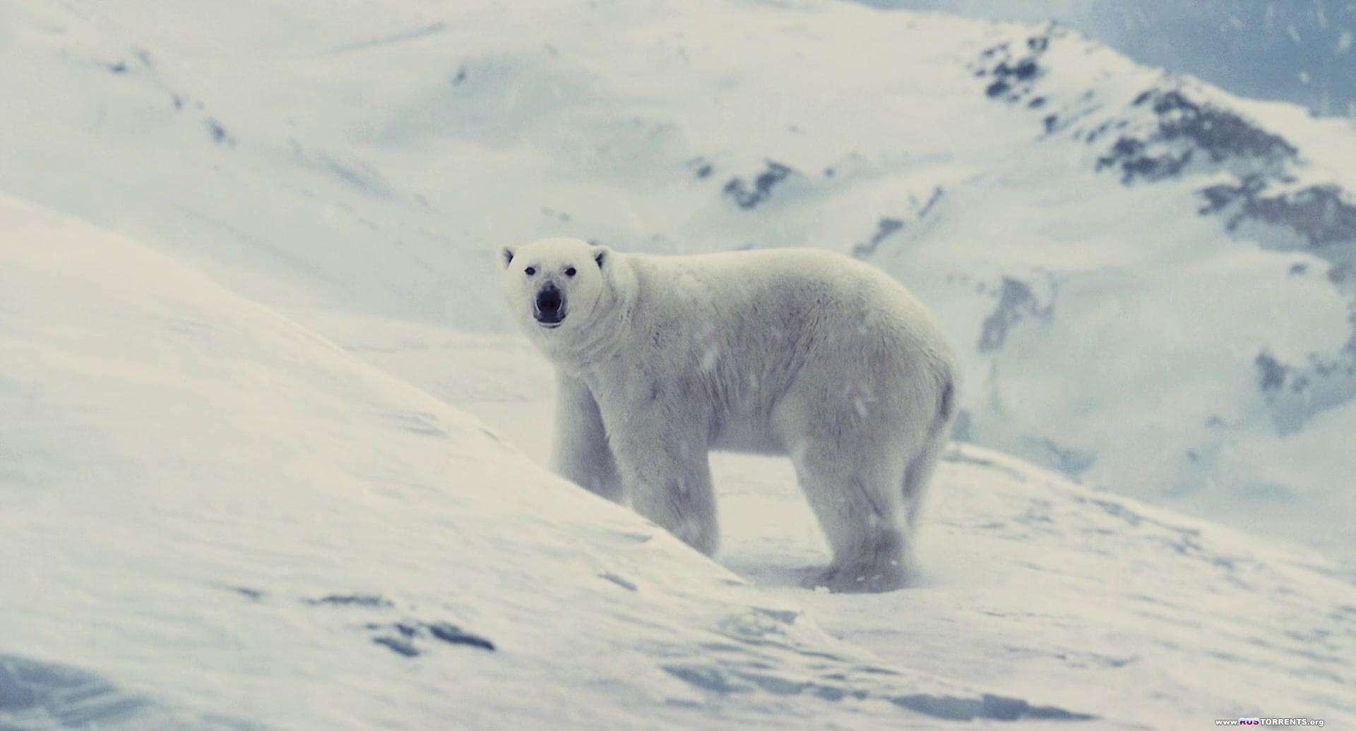 Сквозь снег | BDRip 1080p | L2