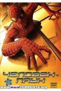 Человек-Паук | HDRip