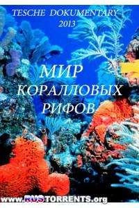 Мир коралловых рифов | HDTVRip 1080p