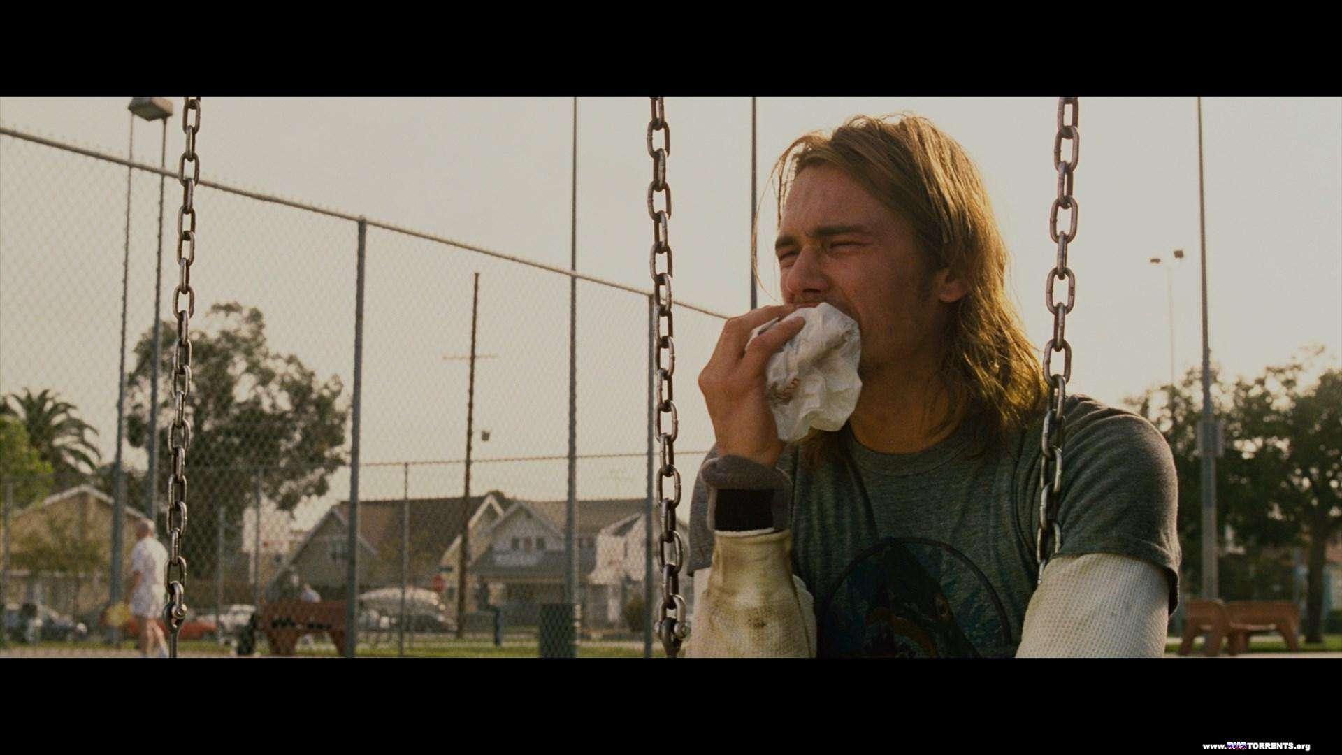 Ананасовый экспресс: Сижу, курю | Blu-Ray Remux 1080p