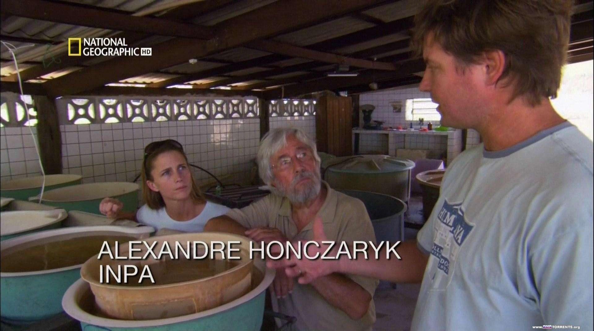 Океанские приключения. Возвращение к Амазонке  [S01]  HDTVRip 1080p