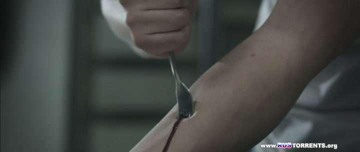 Кровавая работа | DVDRip