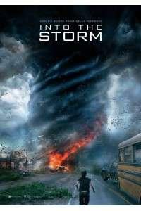 Навстречу шторму | WEB-DL 720p | iTunes
