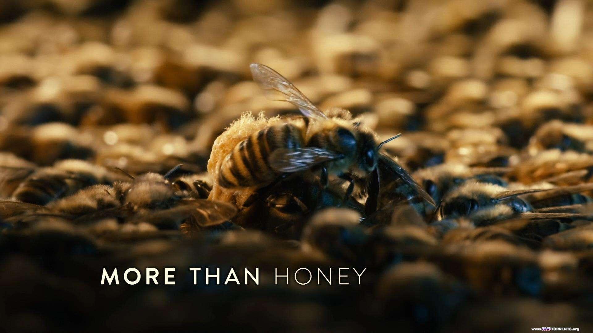Больше чем мёд | BDRip 1080p