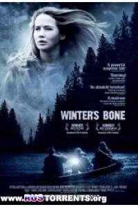 Зимняя кость