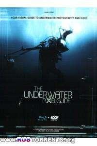 Подводный учебник по пикселям | BDRip 720p
