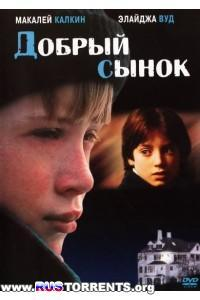 Добрый сынок (Хороший сын) | DVDRip