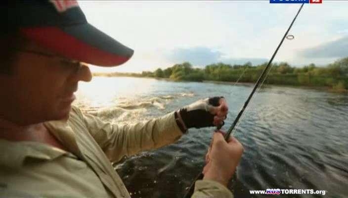 передачи о ловли угря