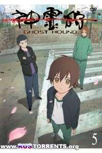Охота на призраков [TV] [01-22 из 22] | BDRip 720p | L1