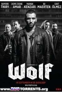 Волк   HDRip   L1
