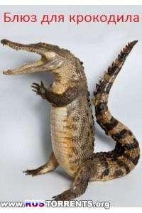 Animal Planet: Блюз для крокодила | SATRip