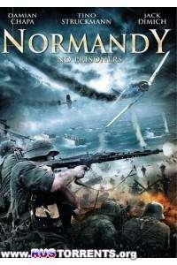 Красная роза Нормандии | HDRip