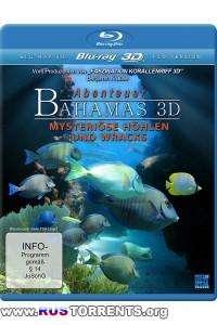 Багамские острова: Таинственные пещеры и затонувшие корабли | BDRip 1080 | 3D-Video