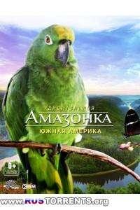 Удивительная Амазонка: Южная Америка | HDRip