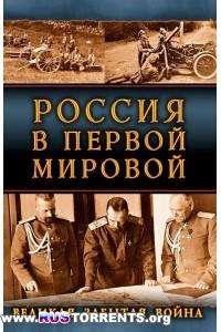 Александр Свечин и др. | Россия в Первой Мировой. Великая забытая война | FB2