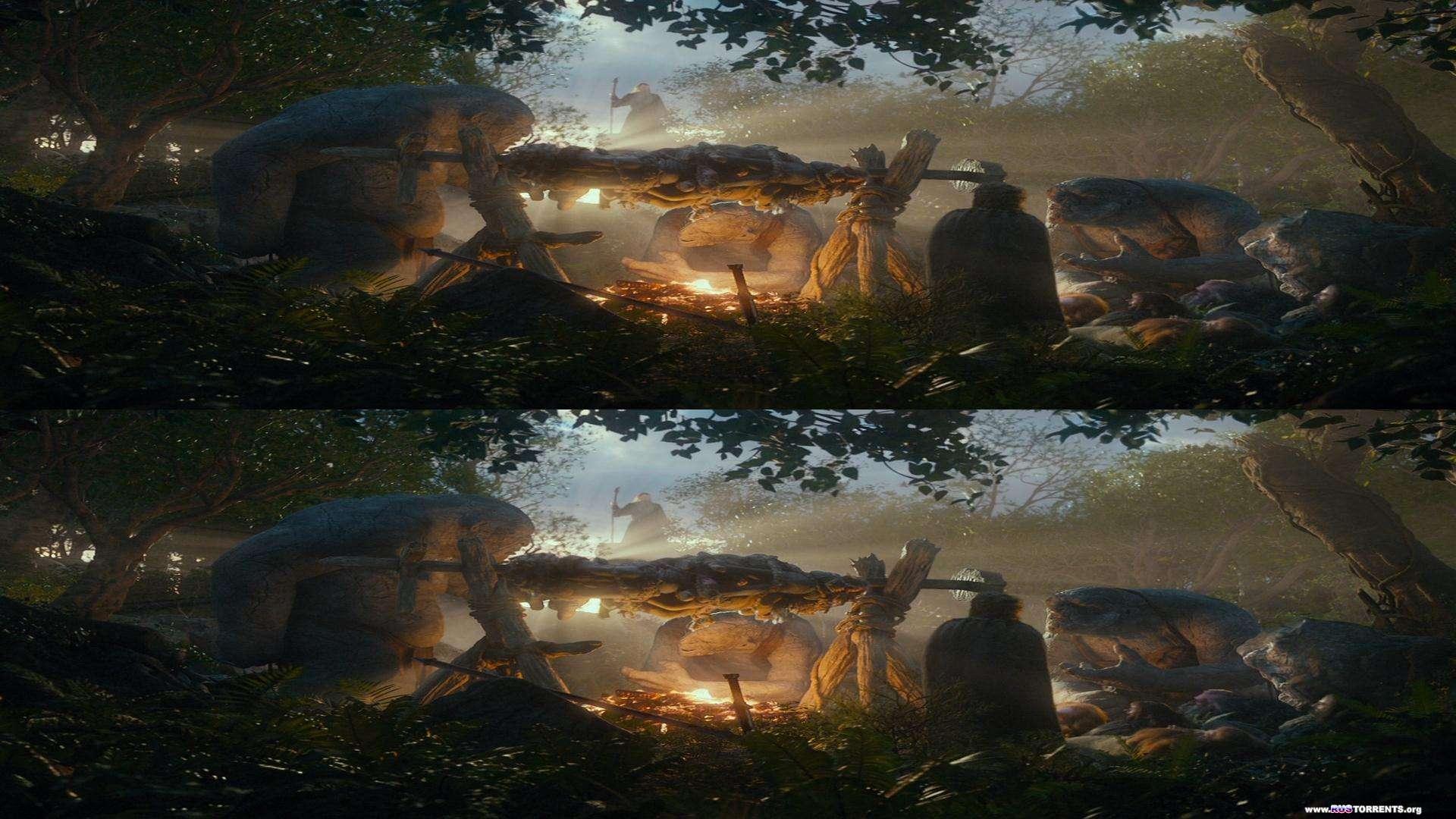 Хоббит: Нежданное путешествие | BDRip 1080p | 3D-Video | Crop