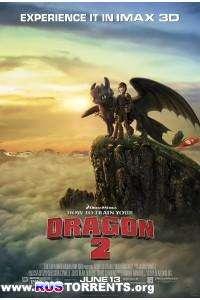 Как приручить дракона 2   Blu-Ray 1080p   3D Video   Лицензия