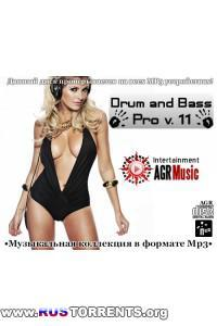 VA - Drum and Bass Pro V.11