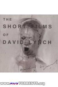 Короткометражки Дэвида Линча | DVDRip
