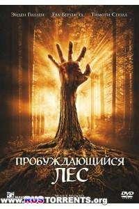 Пробуждающийся лес | HDRip | Лицензия