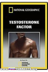 Фактор тестостерона; Наука о людях.Сверхлюди: Допинг.2 фильма.
