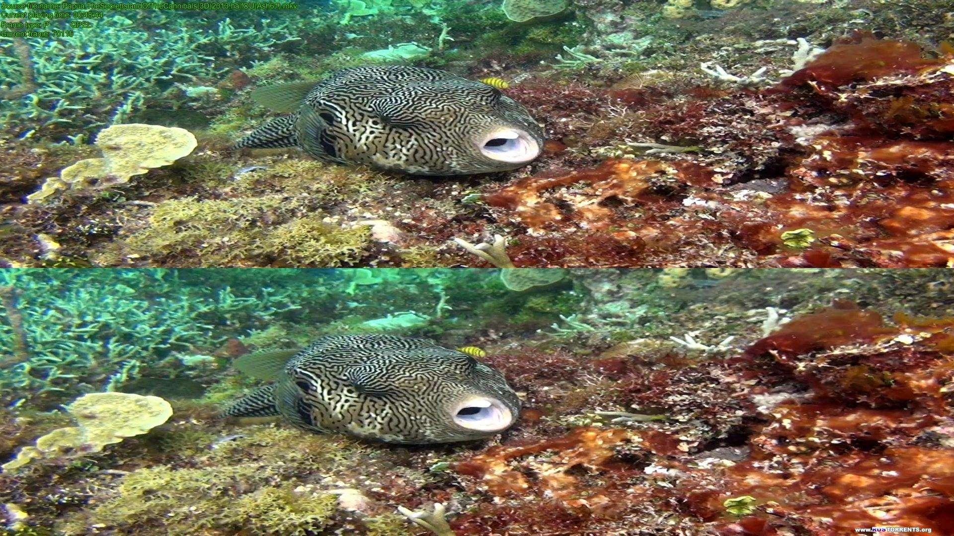 Папуа 3D: Секретный остров каннибалов | BDRip 1080p | 3D-Video | halfOU