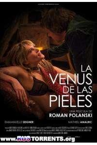 Венера в мехах | HDRip | Чистый звук