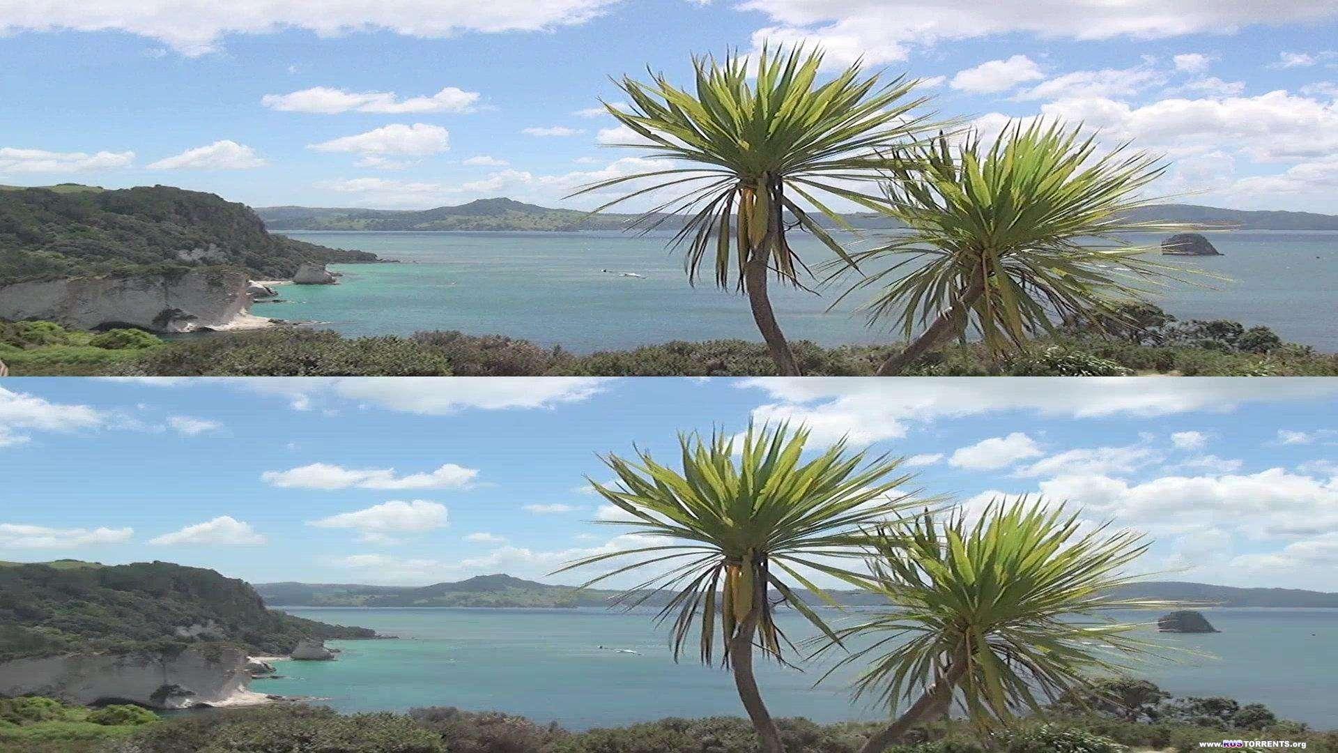 Новая Зеландия 3D: Забытый рай | BDRip 1080p | 3D-Video HOU