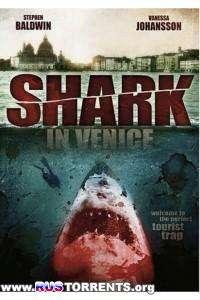 Акула в Венеции | DVDRip