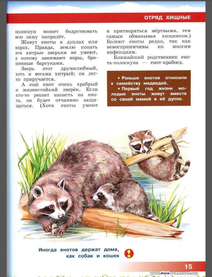 Энциклопедия для детей. Животные Северной Америки