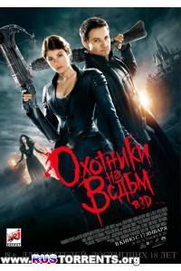 Охотники на ведьм   BDRip 1080p от Youtracker   Лицензия   Theatrical Cut   3D-Video