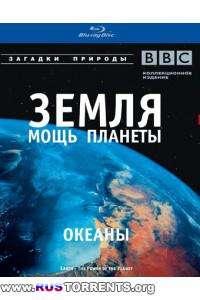 BBC: Земля - Мощь планеты. Океаны   1 сезон   4 эпизод из 5   BDRip 1080p