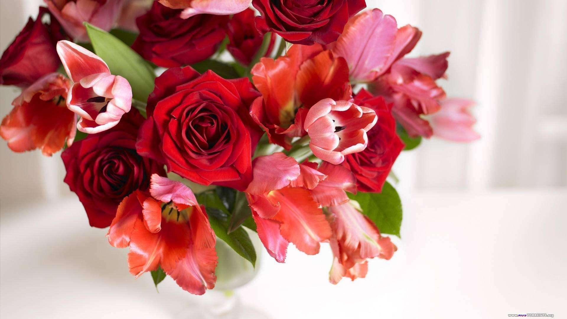 Обои для рабочего стола - Цветы