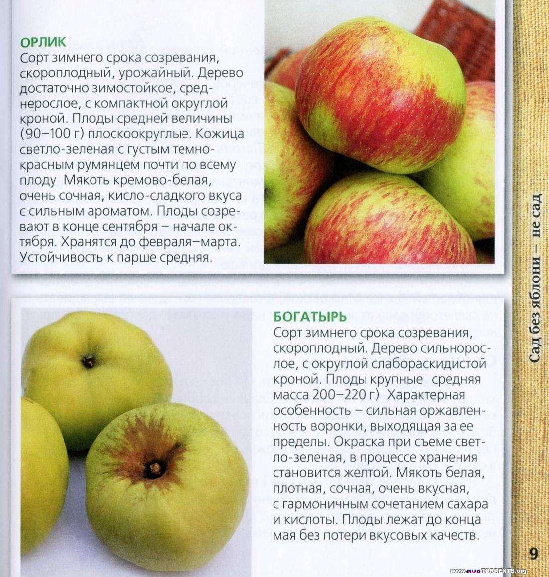 Яблоня. Выращивание, хранение и заготовка, целебные свойства | PDF