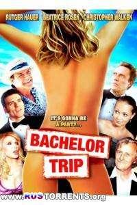 Медовый месяц  | DVDRip