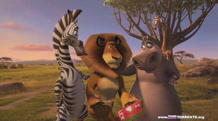 Безумный Мадагаскар | DVDRip