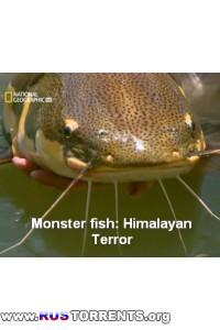 National Geografic: Рыбы-чудовища: Террор в Гималаях | HDTVRip