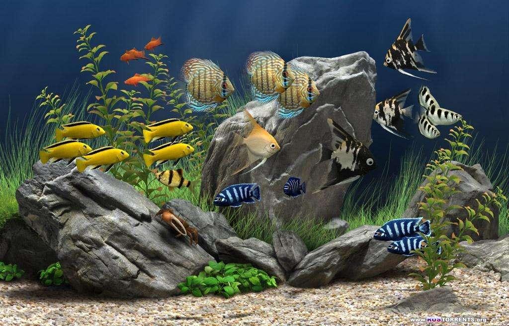 Dream Aquarium 1.2592 Screensaver [RUS|ENG]
