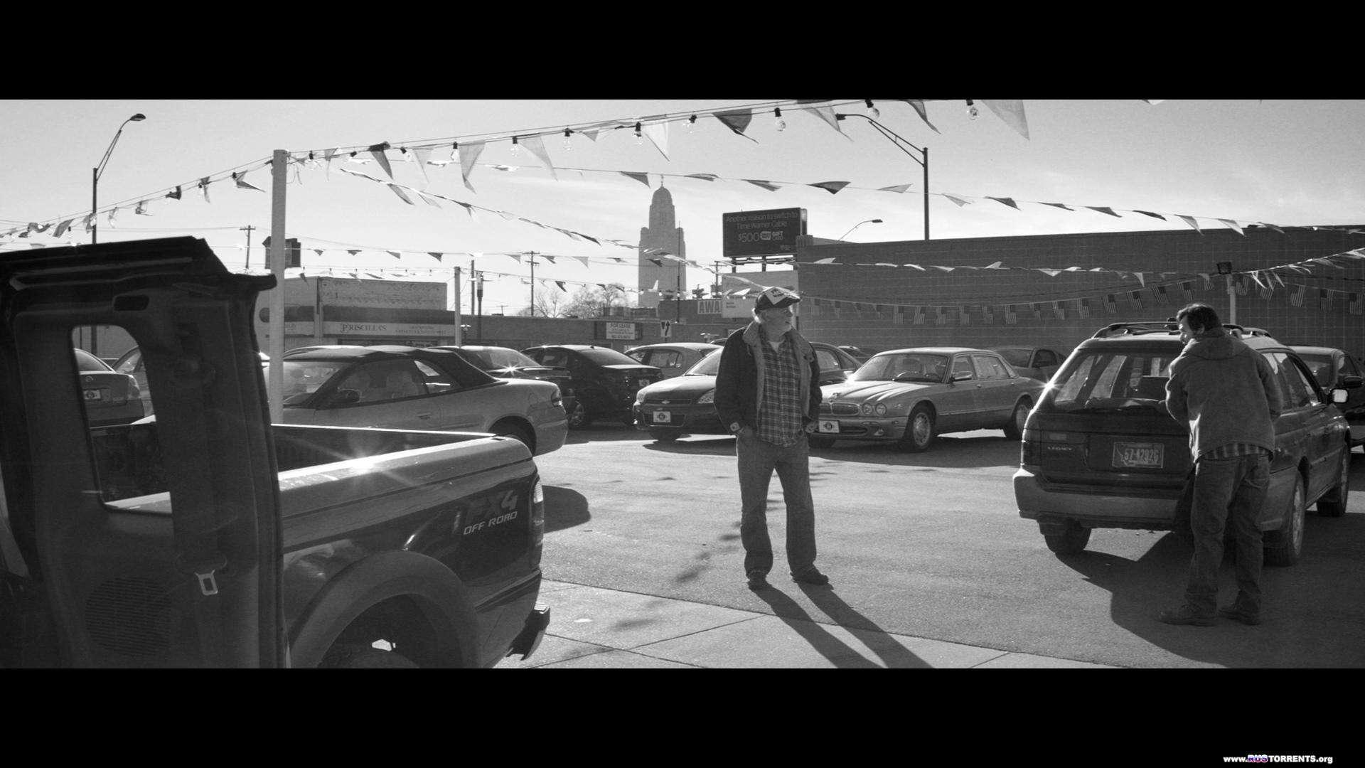 Небраска | BDRemux 1080p | iTunes