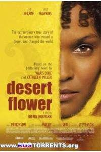 Цветок пустыни | HDRip | L1