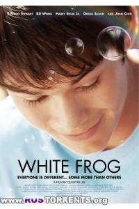 Белая лягушка | WEB-DLRip | P