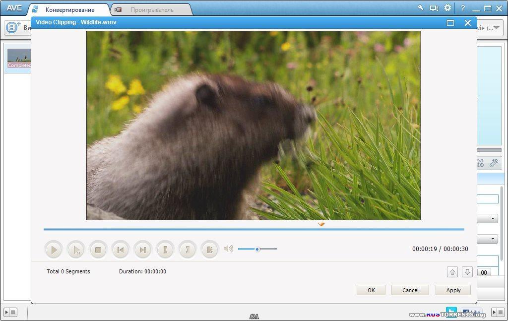 Any Video Converter Professional 5.5.4   PC   RePack & portable by KpoJIuK