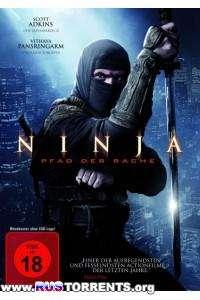 Ниндзя 2 | BDRip 720p
