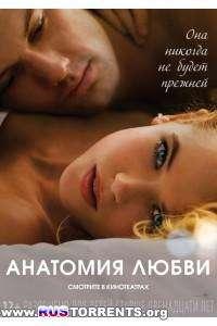Анатомия любви | HDRip | Лицензия