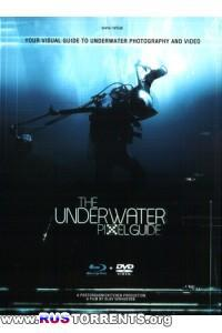 Подводный учебник по пикселям | BDRip-AVC